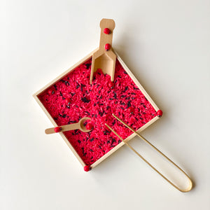 Lady Bug Sensory Kit
