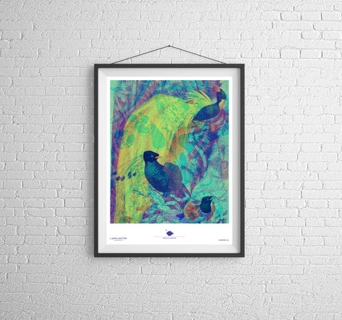 Birds of a Feather Poster Print