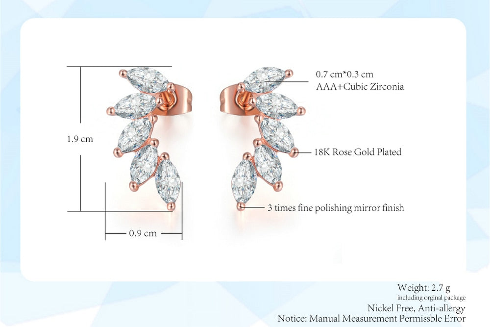 Angel Wings Earings - Dress Mist