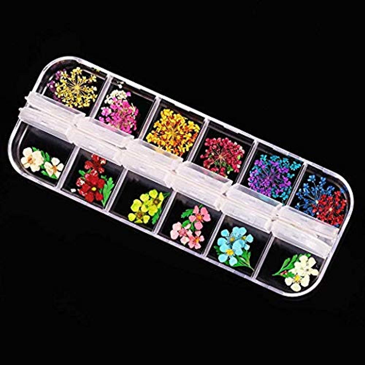 Nail Art Design - Set of 12 Color Nail Dried Flowers
