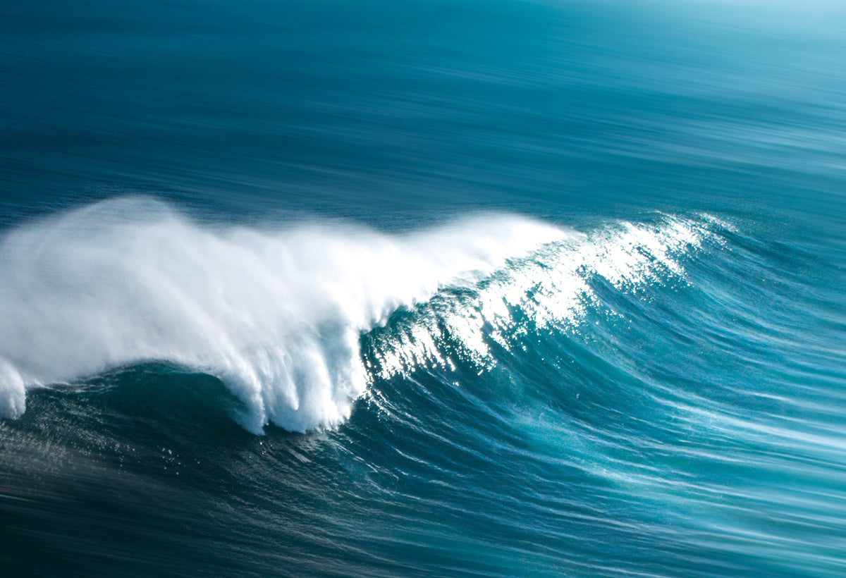 Put tidal energy on the government's agenda