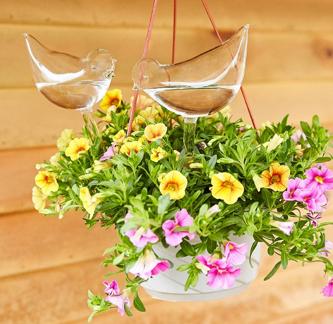 "Hand-Blown Self-Watering ""Birdie Bulbs"" (3Pcs)"