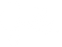 Gully Kids