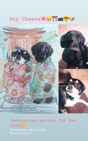 Pet portraits commission with costume