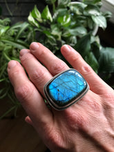 Labradorite Two Finger Ring II, ready-to-ship