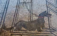 Mosaic ancient Egyptian dog