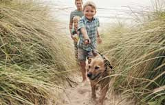 dog friendly UK travelling with your dog ginger ted