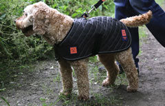 thermal quilted harness dog coat by ginger ted