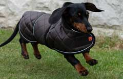 Thermal Quilted Dachshund Dog Coat