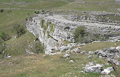 Discovering Malham Cove for a dog friendly day out