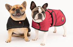Ginger Ted Waterproof coats for Frenchies