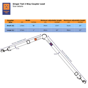 Twin 2 way Coupler Lead