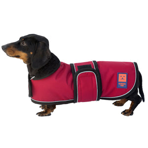 Shower LITE Dachshund Waterproof Coat