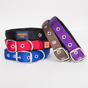 Ginger Ted Nylon Dog Collars. Strong quality webbing, neoprene padded. Available in Black, Brown, Blue, Purple and Red