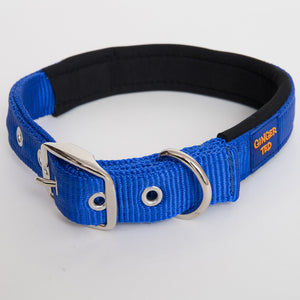 Ginger Ted Blue Nylon Dog Collar. Strong quality webbing, neoprene padded, anti-rust fittings. 25mm wide