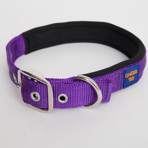 Ginger Ted Purple Nylon Dog Collar. Strong quality webbing, neoprene padded, anti-rust fittings. 25mm or 19mm wide