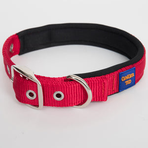 Ginger Ted Red Nylon Dog Collar. Strong quality webbing, neoprene padded, anti-rust fittings. 25mm or 19mm wide
