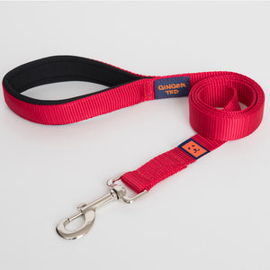 Ginger Ted Red Nylon Dog Lead. Strong 25mm quality webbing, neoprene padded handle. Choice of 1.2m or 1.8m lengths