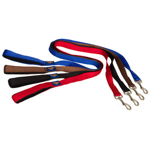 Ginger Ted Nylon Dog Leads. Strong webbing, padded handle. Available in 1.2m or 1.8m and Black, Blue, Brown, Purple, Red
