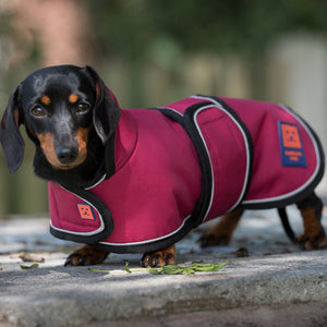 Ginger Ted Cherry Red Waterproof Shower Dachshund Coat. Warm fleecy fur lined, reflective piping. Ideal for short legged breeds