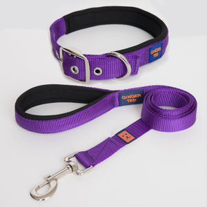 Nylon Dog Collar & Lead Value Packs