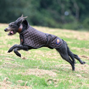 Thermal Harness Greyhound Quilted Coat