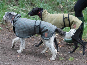 Ginger Ted tweed Greyhound coat. Quality, warm, yorkshire 100% wool tweed, fleecy fur lined. Suitable for Sight Hounds