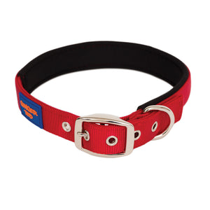 NEW Comfort Nylon Quality Padded Training Leads