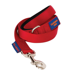 NEW Comfort Nylon Quality Padded Dog Lead