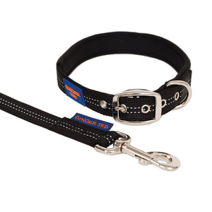 NEW Reflective Comfort Nylon Padded Dog Collar & Lead Value Pack
