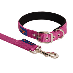 NEW Comfort Nylon Padded Adjustable Dog Collar & Lead Value Pack