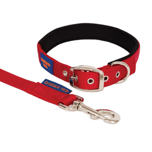 NEW Comfort Nylon Quality Padded Adjustable Dog Collar