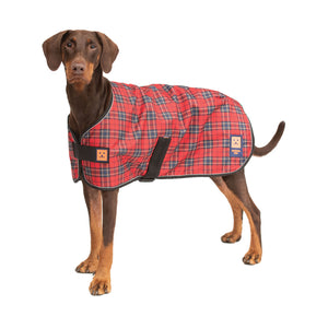 Shower Waterproof Dog Coat