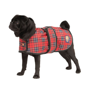 Shower Pug / Frenchie Waterproof Coat
