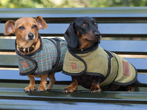 100% Wool Yorkshire Tweed Dachshund Coats by Ginger Ted Ltd