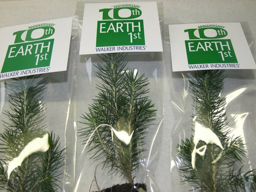 Promotional Giveaway Seedlings