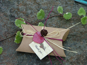 Seed Favors in Craft Pillow Boxes