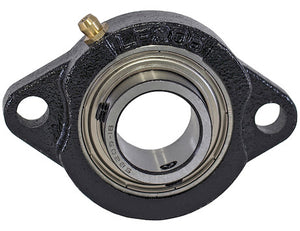 2 Bolt Flange Bearing