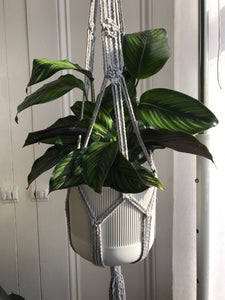 Light Grey Macrame Plant Hanger