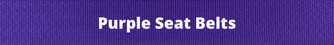 Purple Seat Belt Webbing Colors
