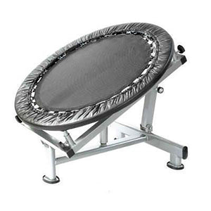 MEDICINE BALL REBOUNDER FOR ABS, CORE & CROSS FIT TRAINING