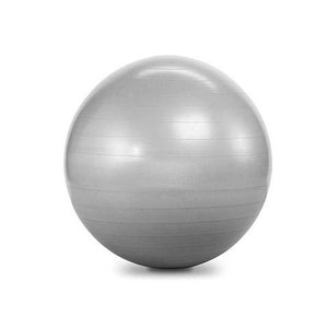 ELEMENT FITNESS COMMERCIAL 55CM ANTI-BURST BALL