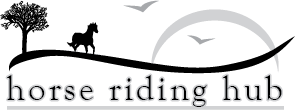 Horse Riding Hub for beginner horse lovers to access the best resources and products to have a safer start to their horse riding journey