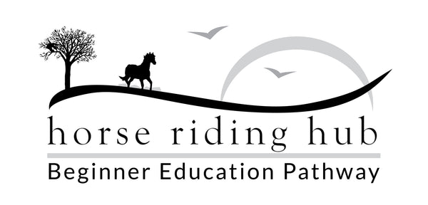 Horse Riding Hub home education for a safer start to horse riding