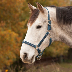 Little Horses Halter