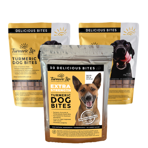 Cancer Support – Fenbendazole Tuermeric Dog Bites Bundle