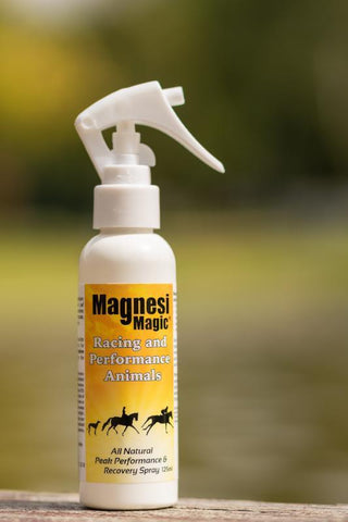 MAGNESI MAGIC RACING & PERFORMANCE