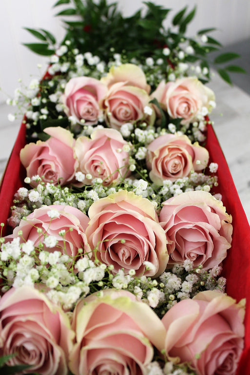One Dozen Pink or Another Color Roses with Baby's Breath Presented in a Box