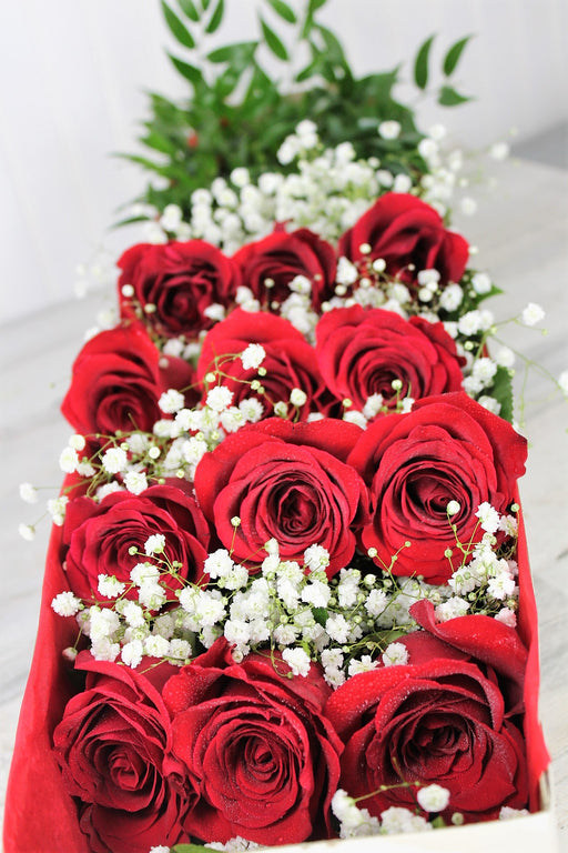 One Dozen Roses Presented in a Box -Red Elegance