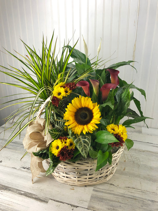 Garden in a Basket With Cut Flowers